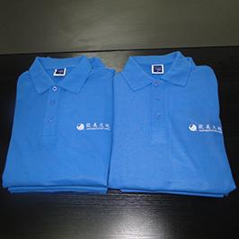 એ 3 ટી-શર્ટ પ્રિન્ટર WER-E2000T દ્વારા પોલો શર્ટ કસ્ટમાઇઝ્ડ પ્રિંટિંગ નમૂના